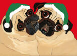 (HA94) 2 Fawn Holiday Pugs