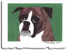 Note Card - Boxer