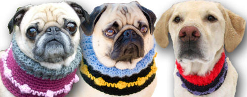 Visit my Etsy Shop to order your custom Dog Neck Warmer!